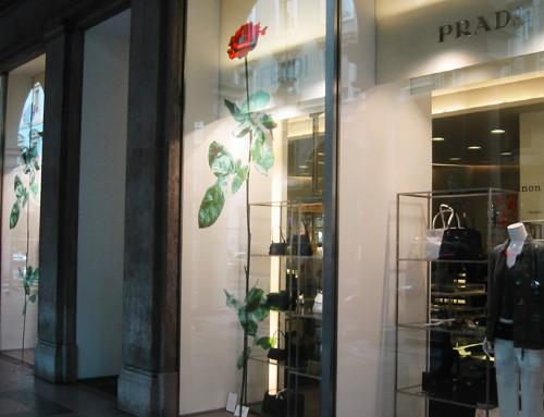 Vetrofania decorativa per negozio